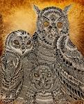 Maahy-owl family6